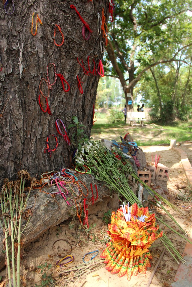 Árvore dos Killing Fields onde bebês eram arremessados vivos