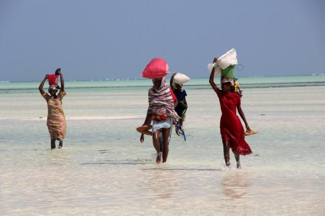 Mulheres locais que trabalham em fazendas de alga no mar!