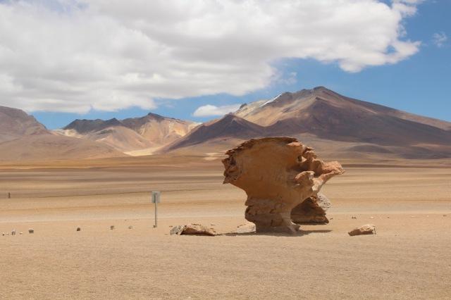 Outro ângulo da famosa Árvore de Pedra