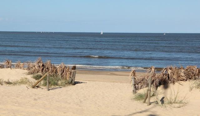 Passeando pela Praia em Pocitos