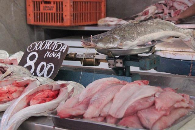 No mercado de peixes tem várias espécies típicas da região