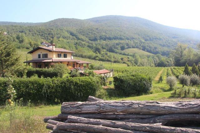 Brda, uma das regiões produtoras de vinho da Eslovênia