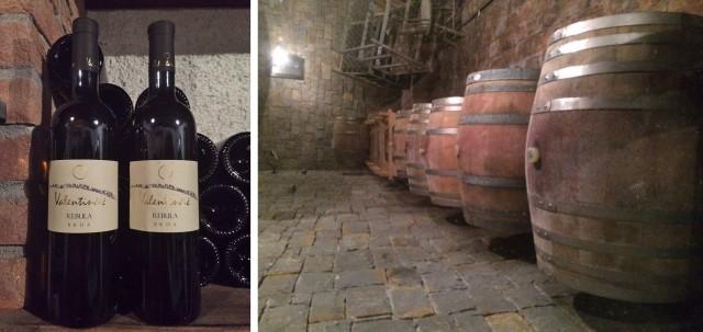 vinicola-eslovena