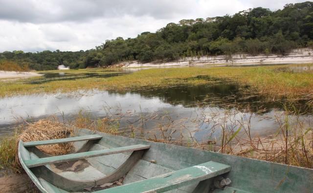 paisagem-amazonia