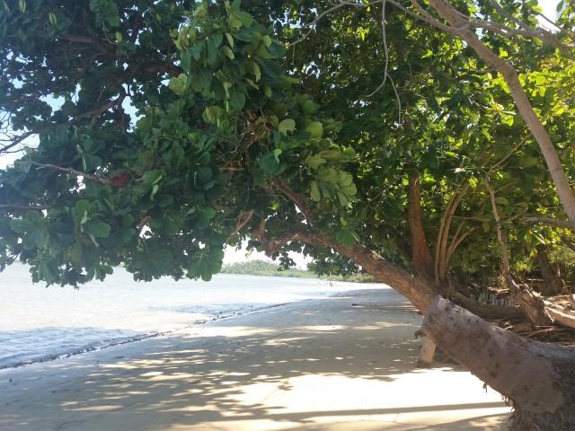 Praia-Morere (2)